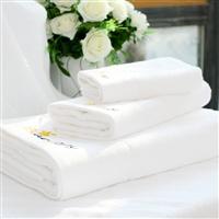 2013全新品牌(Bearsteps)铂金缎套巾白色